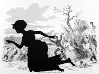 Kara Walker, Harper's Pictorial History of the Civil War (Annotated)