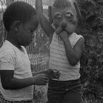 Event photo for: Killer of Sheep - Charles Burnett (1977)- Charles Burnett IN PERSON