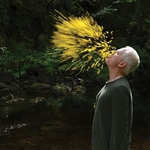 Event photo for: Leaning into the Wind: Andy Goldsworthy