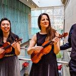 Carpe Diem String Quartet - Seize the Music Series: The Classics