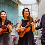 Carpe Diem String Quartet - Seize the Music Series: Integration
