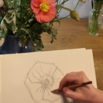 Spring Flower Line Drawing