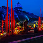 Event photo for: Chihuly Nights