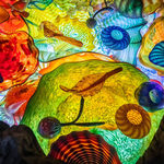 Event photo for: Chihuly Collection