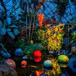 Фото события для: Chihuly Nights