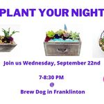 Plant Your Night Away w/ Succulents