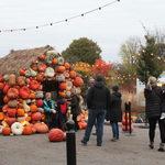 Event photo for: Pumpkins Aglow