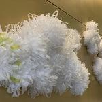 Crystallofolia