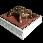 Katherine N. Crowley: Little Turtle