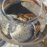 Nicole Vanover: Goldfish Bowl
