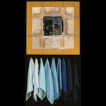 Paula J. Nees: Blue Shades