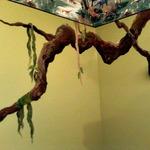 Maria Palmer: Tree Limb Dino Mura