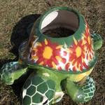 Marvin Daniels: Raised Bed Turtle