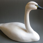 Paul Herbeck: Swan