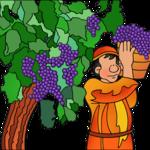 Phillip Martin: Working in the Vineyard