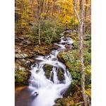 Rose Klockner Photography LLC: Autumn_Flows_Away.jpg