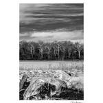 Rose Klockner Photography LLC: Still_In_Winter_s_Grasp.jpg