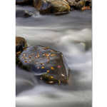 Rose Klockner Photography LLC: W_10x15_Softly_Fall_Ebbs_Away.jpg
